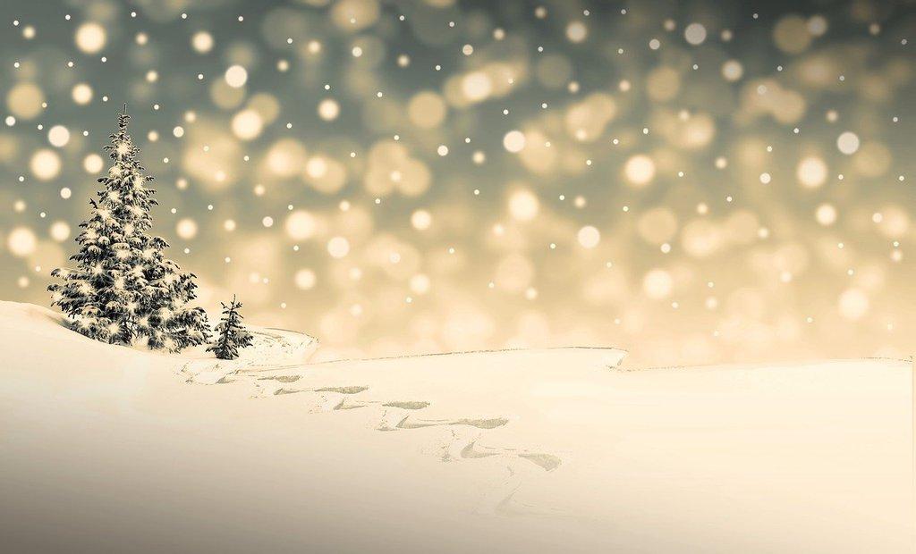 christmas-3864540_1280.jpeg