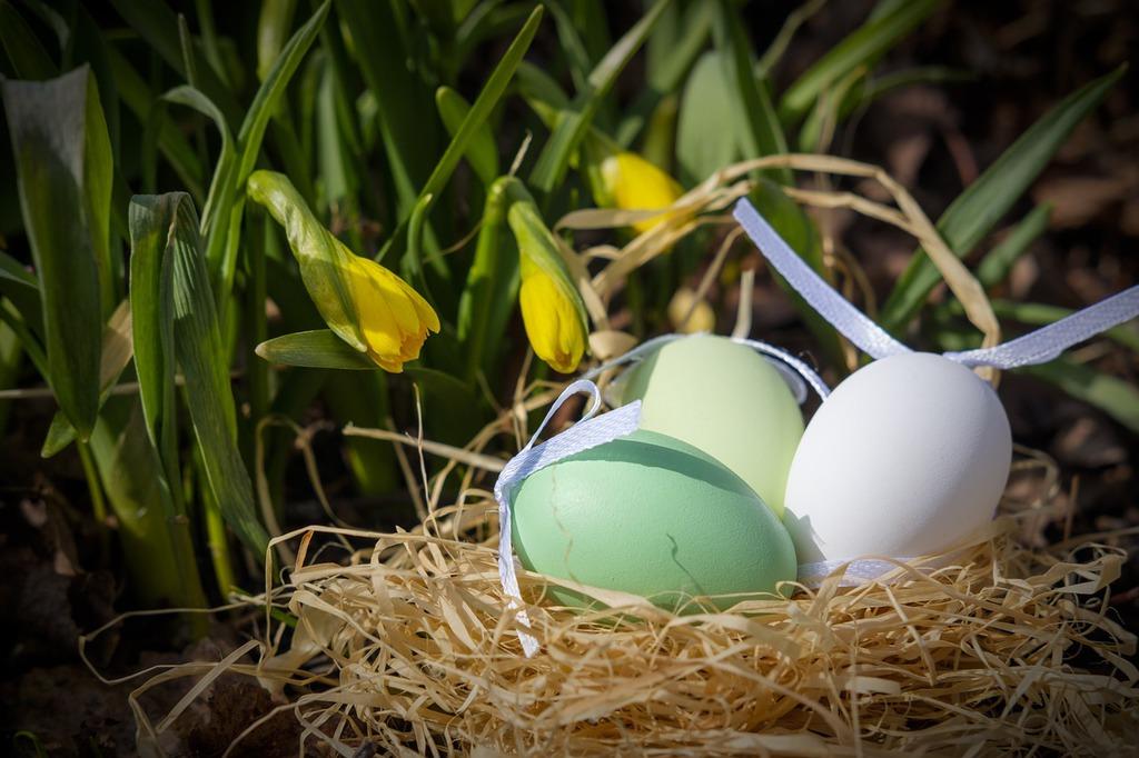 easter-eggs-3257093_1280.jpeg